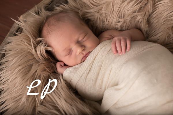 Austin Newborn (4)