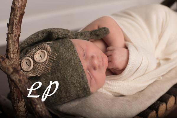 Austin Newborn (8)