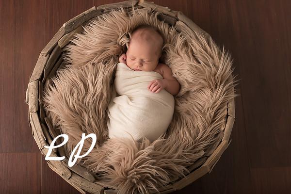 Austin Newborn (7)