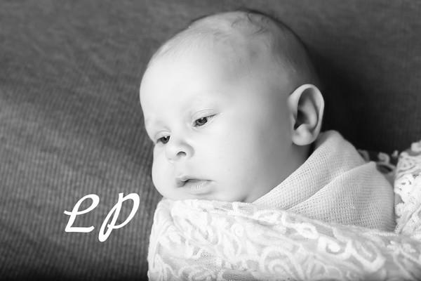 Aveyah Newborn (4)