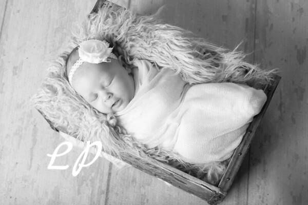 Aveyah Newborn (10)