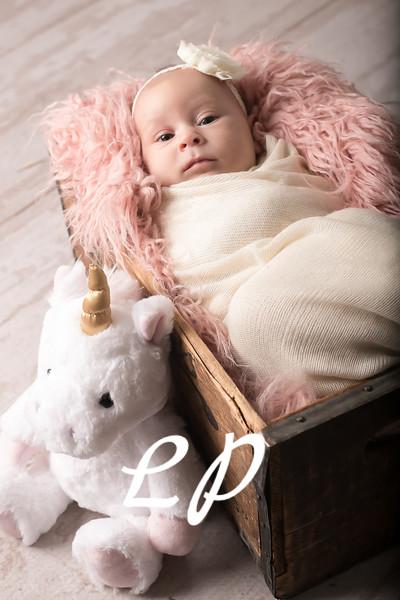 Aveyah Newborn (8)