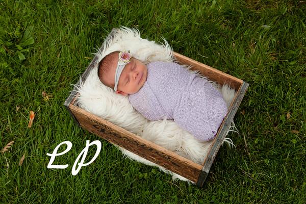 Bria Newborn (9)