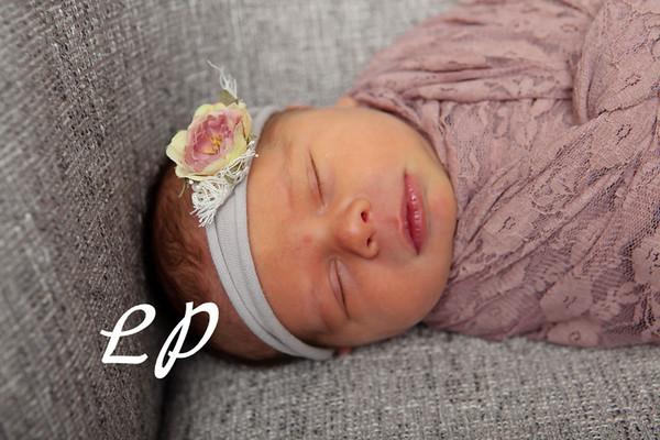 Bria Newborn (4)
