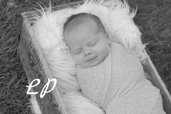 Bria Newborn (11)