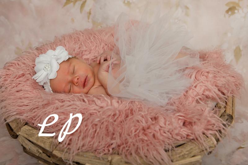 Bria Newborn (8)