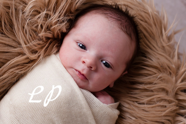 Jensen Newborn (9 of 58)
