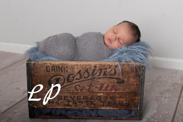 Noah Newborn-19