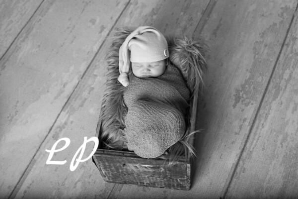 Noah Newborn-12