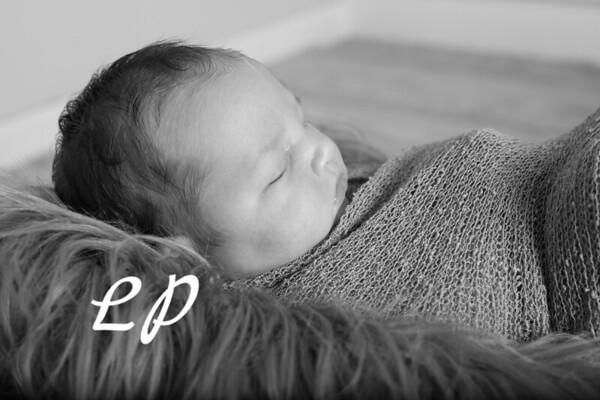 Noah Newborn-15