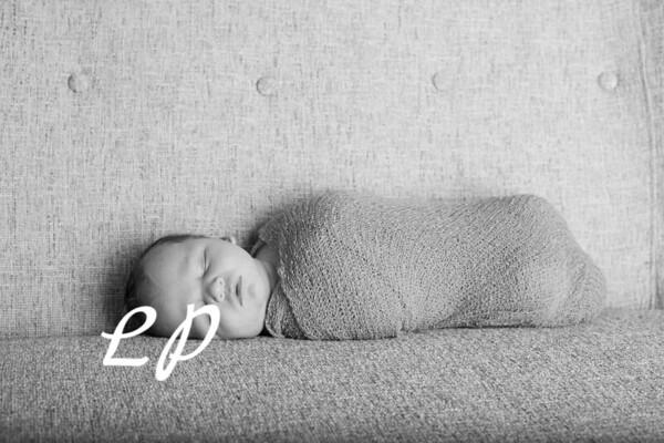 Noah Newborn-20