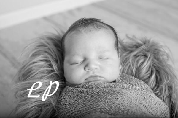 Noah Newborn-14