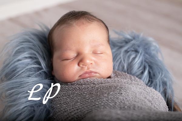 Noah Newborn-13
