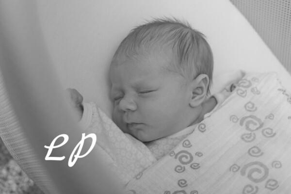 Newborn (4)