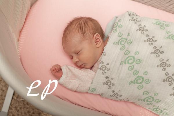 Newborn (3)