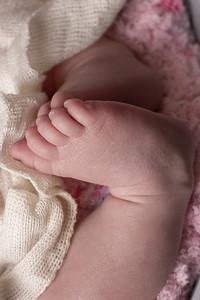 Steafanik Newborn2-02