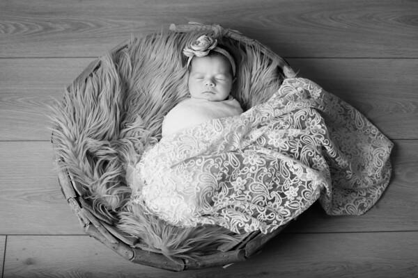 Steafanik Newborn2-20