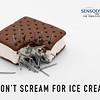 Dont scream for ice cream