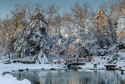 DA077,DT,Winter Morning at the Arborteum, (1 of 1)