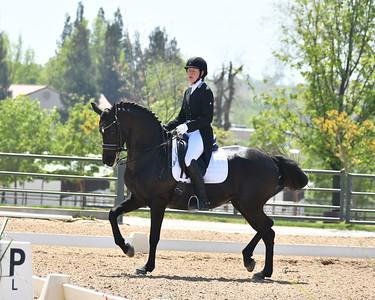 GSD 21 Ellexus Knight 199