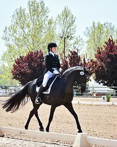 GSD 21 Ellexus Knight 181