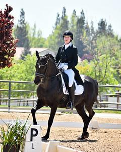 GSD 21 Ellexus Knight 200