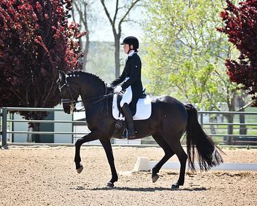 GSD 21 Ellexus Knight 197