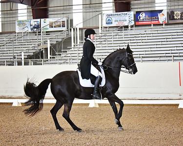 GSD 21 Ellexus Knight 6534