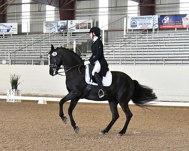 GSD 21 Ellexus Knight 6533