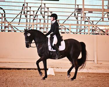 GSD 21 Ellexus Knight 6493