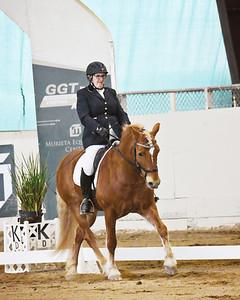 GSD 21 Coppertone Girl 3818