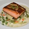 WA_0247 Salmon