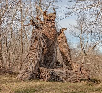 DA111,DJ,Treebeard sited in Central Indiana