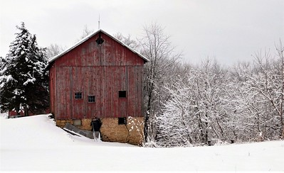 DA104,DT,Gloomy Red Barn on a Snowy Day, East Dubuque,  Illinois[2305843009270312542]