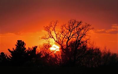 DA104,DP, Sunset Sky on Fire