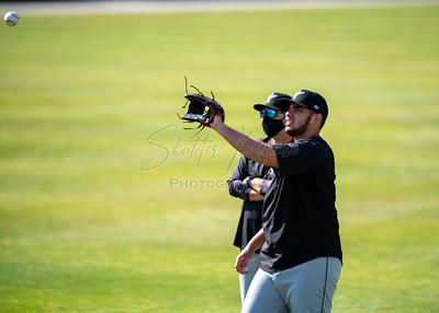 2021-05-08 - Woodpeckers at Mudcats