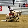 High Brow Rider
