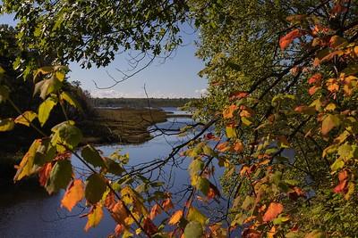 DA110,DN,Early Fall