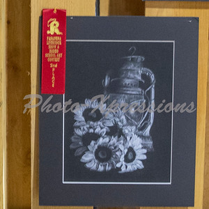 2nd place_2247