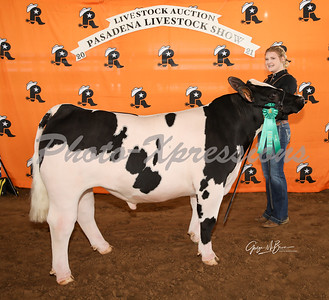 12th place steer_2833