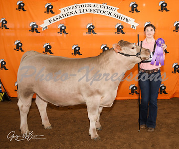 5th place steer_2812