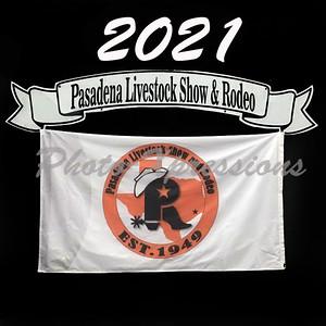 2021-PLSR web logo  _1