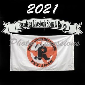 2021-PLSR web logo  blank