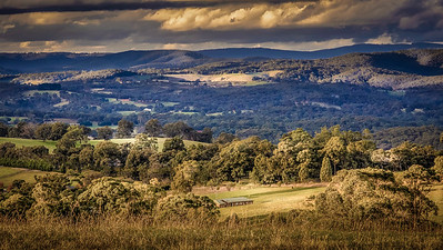 Rolling countryside with Kinglake Ranges