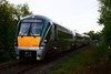 22059 passes Minish Level Crossing (XT102) with the 1705 Tralee - Cork. Sat 01.05.21