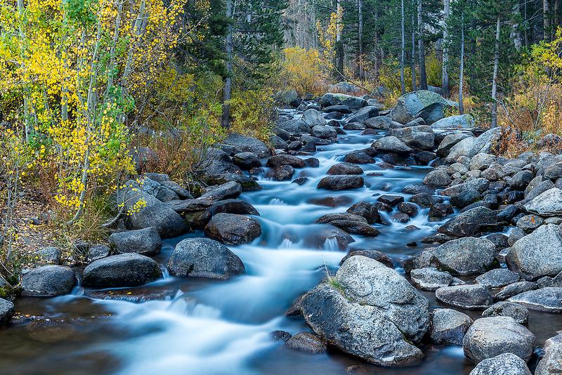 Fall Colors on Bishop Creek