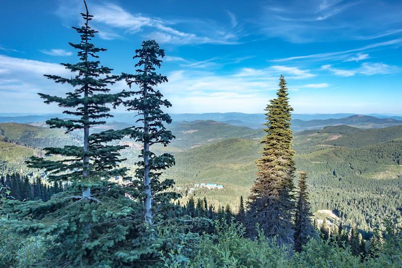 beautiful scenic nature views at spokane mountain in washington state