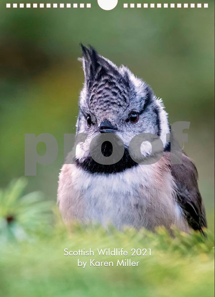 Front Cover - Crested Tit