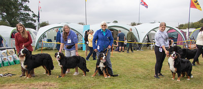 20210904-OSF MA Puppy winners-9286