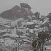 Cap Rock in Snow